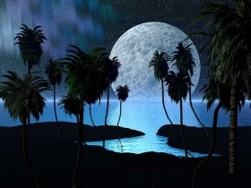 full-moon-and-palms