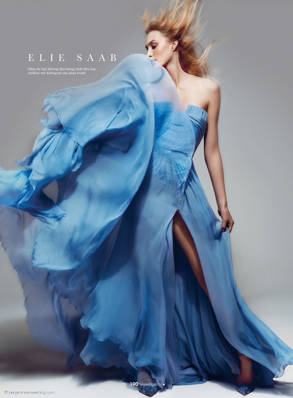 Dauphine McKee in Elie Saab Haute Couture © Benjamin Kanarek for ELLE Vietnam April 2014