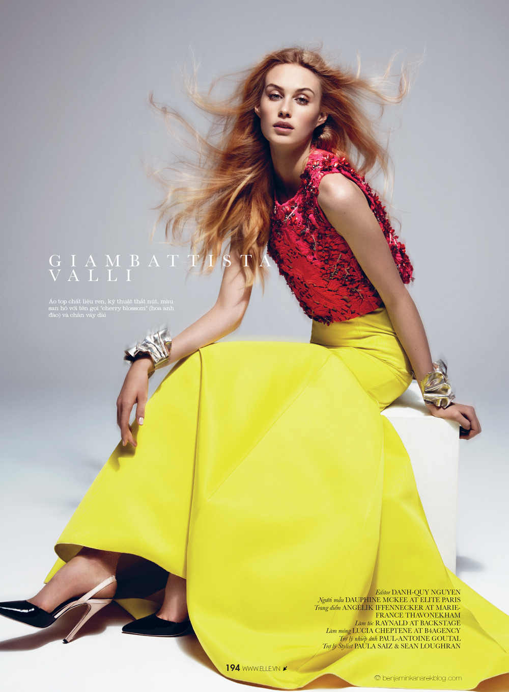 Dauphine McKee in Giambattista Valli © Benjamin Kanarek for ELLE Vietnam April 2014