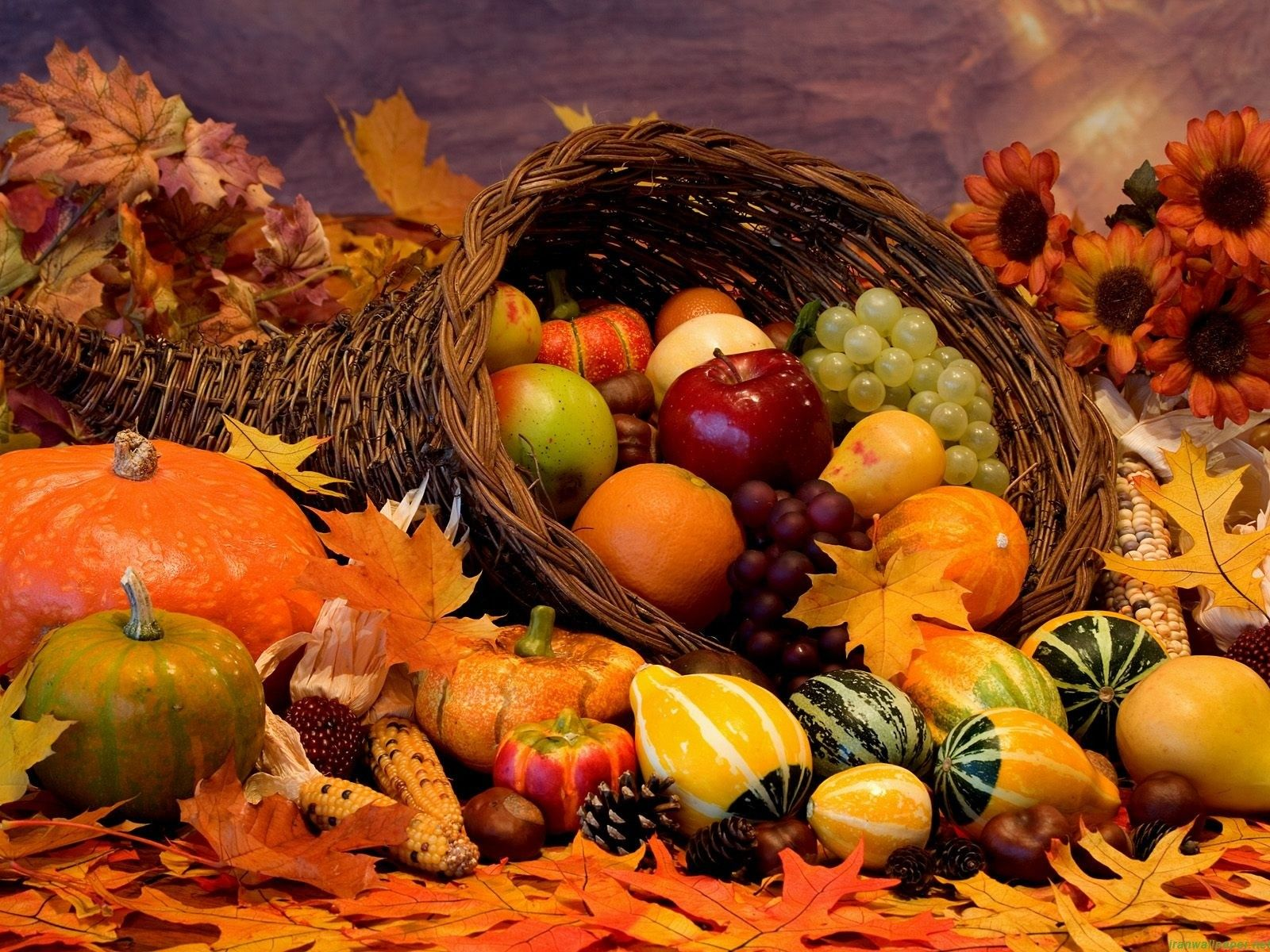 definition thanksgiving theme wallpaper - photo #5